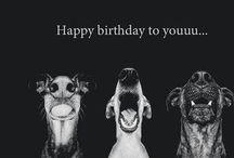 Birthday Wishes / Birthday cards, quotes, etc