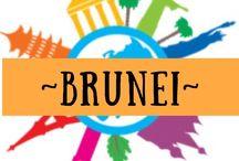 ~ BRUNEI ~ / Travel to Brunei