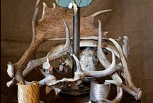 Everything Deer Interiors / Deer antler and hides are sensational accessories for authentic interior styling - natural, elemental and connected. Celebrate the natural beauty of all things deer. www.1803.com.au