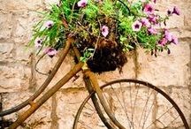 Sue's Flowery Bike Board / Fabulous bicycles beautifully decorated
