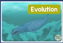 Evolution / Evolution Biology & Natural Selection in education - great science lessons and activities for teachers to use in their classroom for natural selection, evolution, Darwin, speciation,  and survival of the fittest