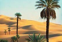 Sand / deserts, dunes