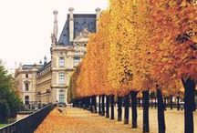 Local Attractions in Paris