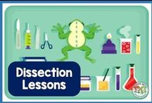 Dissection / Ideas, lessons, and activities for comparative anatomy and dissection in science education - biology and life sciences