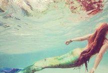 Mermazing / Under The Sea...