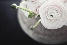 Ambiances florales...