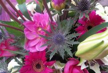 Close ups / Close up photographs of flowers by Jo Beth floral design