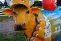 Cows / Cows