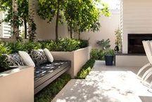 Ogródek ogródeczek