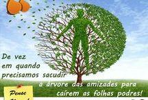 Frases de Amizade / Frases, Amizade, amigos... Fonte: http://frases-de.pt/