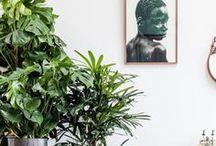 WOHNIDEEN / Ideen finden für Wohnen, Möbel, Dekoration, Wohngestaltung