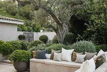 MODERNER GARTEN / Ideen für alle, die moderne Gärten lieben.