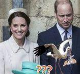 Wiliam a Kate 8 tehotná III