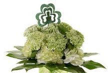 St. Patrick's Day Flowers / by AboutFlowers