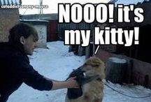 Humor n Funny pics / Humor n Funny pics #humor #funny