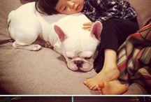 Animal love / Animal people love