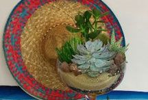 Cinco de Mayo / Use lots of colorful flowers to decorate your May 5 Mexican celebration.