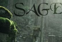 Sage / Sage: an urban fantasy novel about a girl who protects a graveyard and the voluntary fallen angel and demon she gets stuck with.
