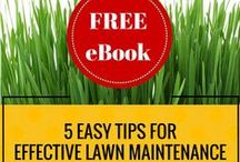 Lawn & Garden Tips / Lawn and gardening tips that will save you time, money, and resources, and perhaps be better on the environment!