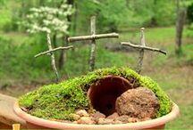 Gardening / by Heidi Nicole