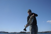 Sportfishing in Norway! Worlds greatest country to fish in!   / http://storlaksen.com/index.php/no/ check out my site fore any information about sportfishing in Norway!