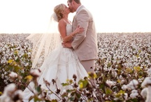 Cotton and hessian