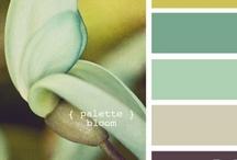 color.make.
