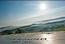 Verduno / Foto di Verduno (CN) Italia