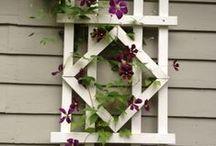 Garden Beauties / by Joan Capria