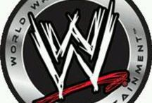 WWE    ELI / CM PUNK IS THE BEST  this is my sons board