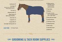 Horse Show Tips
