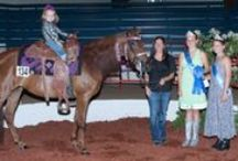 Horse Show Pics