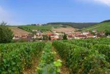 Côte des Bar en Champagne / La côte des Bar est située en Champagne-Ardenne et constitue la partie la plus au sud du vignoble de Champagne. Cette région historique tire son nom des villes de Bar-sur-Seine et de Bar-sur-Aube.
