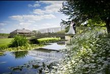 The Picturesque Moat / The historic moat at Caswell House features a picturesque bridge surrounded by stunning gardens.