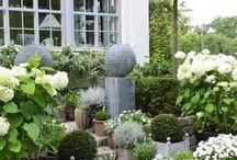 Garden / Inspiring outdoor ideas