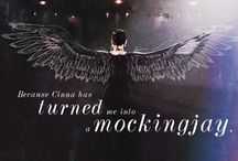 THG & Catching Fire <3 / The Hunger Games: Catching Fire In Theaters 11/22/2013 - Fire Is Catching  / by Stacy C aka Runed Mockingjay ➰