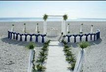 Dream Wedding / by Katelyn Roberts