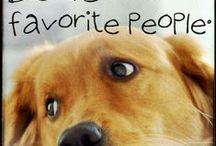 Wonderful Dogs / Avoid Puppy Farms