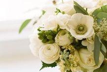 Wedding - white & green