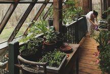 EARTHSHIPS & COB HOMES / EARTHSHIPS & cob home - sustainable homes