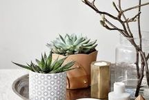 DECOR - COFFEE TABLE COLLECTIVE / Coffee table styling