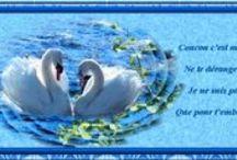 Armony Cartes Postales / Les Créations Armony sur mes Cartes Postales