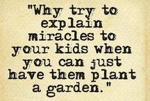 Kids Gardening / Ideas for the Children's Garden at Lost Corner