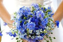 Blue Weddings / Trends for wedding colors in 2014 - Blue Weddings
