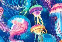 InspiredBy: Marine Life