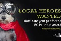 Pet Heroes / Pet Heroes Past and Present.   Here are a few of our favorite inspirational pets, along with a few special goodies for the furry hero in your life.   Nominate your Pet for the 2016 PFNM Pet Hero Award !    If you are in the BC area, and have a Pet Hero story to share, we want to hear it!   Go to http://www.petfoodnmore.com/pet-talk/tips-tricks/20160801_local-heroes for details!