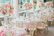 Blush Pink Theme / Blush Pink and Rose Pink Destination Weddings Theme Inspirations