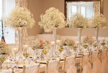 Baby's Breath / Baby's Breath Wedding Ideas:At wedding Romantique, we will be glad to help you create you uniquely Customized Destination Weddings. We work with most resorts and can create Stylish Destinations Wedding full of color, texture that makes a statement! We will take care of your destination wedding services from sourcing the right vendors, creating a stylish event that reflect your personality and budget to all the legal requirements for getting married on away from home
