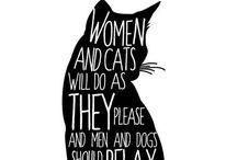 Katjes / My guilty pleasure: kattenplaatjes