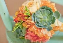 Color Combo Bliss / Hi, I'm Aubrey and I am a designer/blogger www.swankurbia.com / by Aubrey Davis